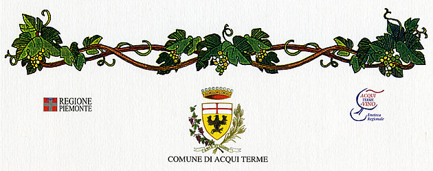 """""""Città di Acqui Terme"""" (city of Acqui Terme), 29th enological competition: merit diploma issued to the wine Piemonte Chardonnay 2007."""