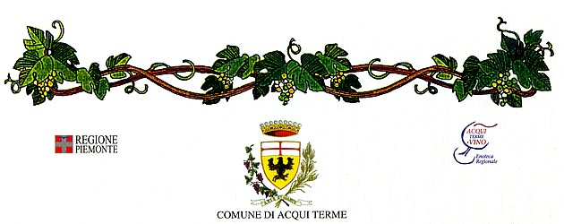 """Città di Acqui Terme"" (city of Acqui Terme), 29th enological competition: merit diploma issued to the wine Langhe Freisa 2007."