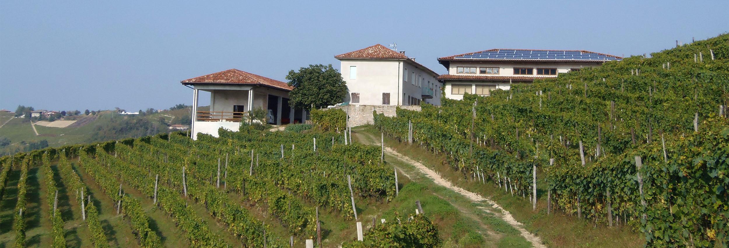 Dal 24 giugno 2011 l'Azienda Agricola Ca' del Principe inizia a produrre energia pulita con il fotovoltaico.