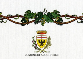 """Città di Acqui Terme"" (city of Acqui Terme), 29th enological competition: merit diploma issued to the wine Piemonte Chardonnay 2007."