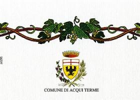 """""""Città di Acqui Terme"""", 29° Concorso Enologico: diploma di merito rilasciato al vino Moscato d'Asti 2008."""